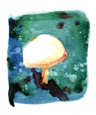 The Lone Mushroom